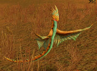 Image of Thunderhawk Hatchling