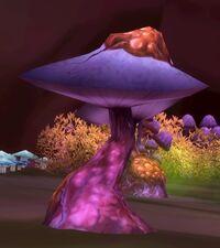 Image of Underbog Mushroom