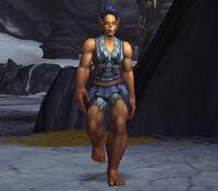 Image of Frostwolf Gladiator