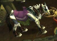 Image of Skeletal Horse