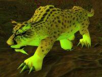 Image of Swamp Jaguar