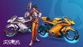 Celebration Collection - Heroes of the Storm.jpg
