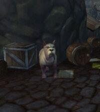 Image of Wary Mastiff