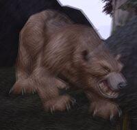 Image of Great Thistle Bear Spirit