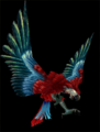GreenWingMacaw.png