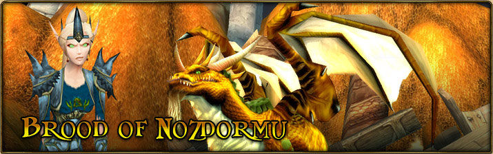 2004 Game Guide's Banner for the Brood of Nozdormu Reputation
