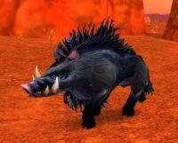 Image of Corrupted Mottled Boar