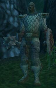Image of Cursed Paladin