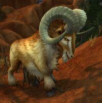 Image of Stonetalon Ram