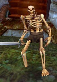 Image of Rattlecage Skeleton