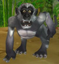 Image of Helpful Jungle Monkey