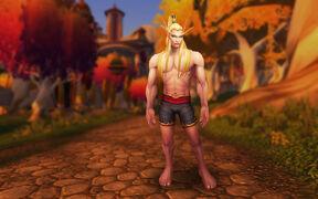 Model updates - blood elf male 2.jpg