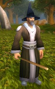 Image of Rogue Wizard