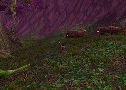 Teldrassil furbolg village.jpg