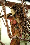 Kerrigan Fiber Statue1.jpg