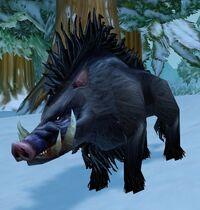 Image of Crag Boar