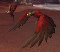 Image of Ravenous Buzzard