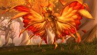 Image of Crazed Dragonhawk