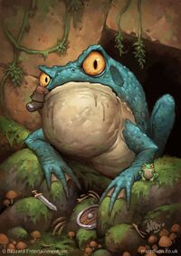 Image of Huge Toad