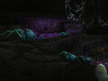 Skitterweb Tunnels.jpg
