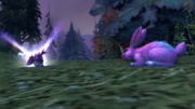 Noblegarden Bunny pet and player