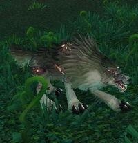 Image of Rabid Worg