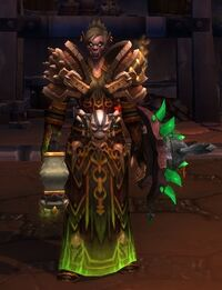 Image of Fel Touched Seer