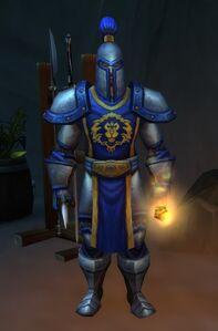 Image of Darkbreak Guard