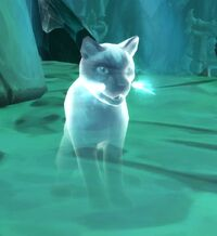 Image of Spectral Cat