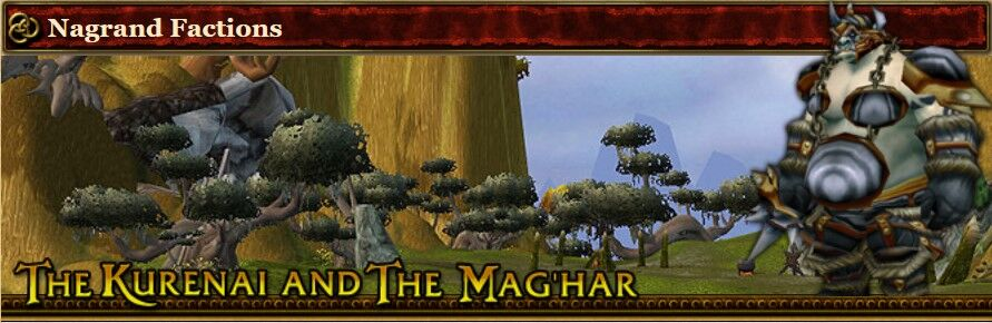 2004 Game Guide's Banner for the Nagrand Factions Reputations