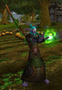 Image of Darnassian Druid