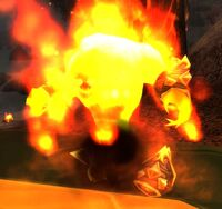 Image of Fire Elemental Remnant