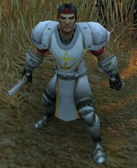 Image of Theramore Commando