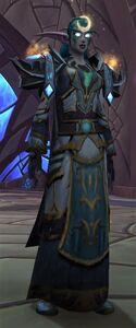 Image of Grand Priestess of Elune