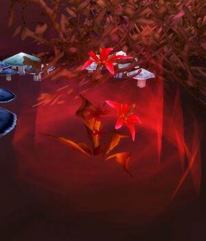 Sanguine Hibiscus.jpg