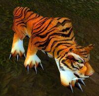 Image of Bloodscalp Tiger