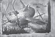 Traveler Whale Shark Attack.jpg