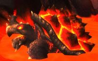 Image of Matriarch Fire Turtle