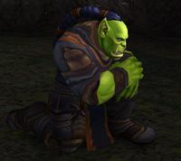 Image of Hellscream's Reach Recruit