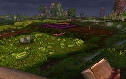 Fruited Fields.jpg