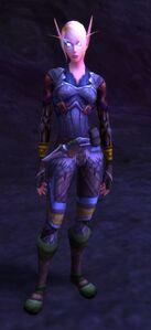 Image of High Elf Wayfarer