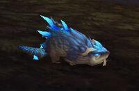 Image of Thundertail Flapper