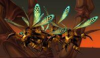 Image of Hive'Zora Wasp