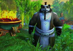 Pandaren early in-game.jpg