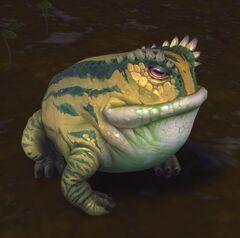 Speckled Bullfrog.jpg