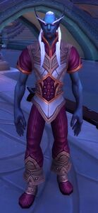 Image of Shal'dorei Servant