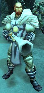 Image of Argent Crusade Rifleman