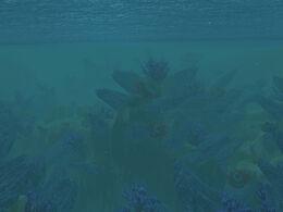 The Vile Reef.jpg
