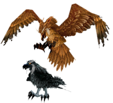 Stormcrows.png