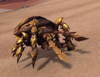 Image of Brine Beetle